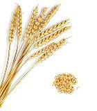 Getreide, Buchweizen